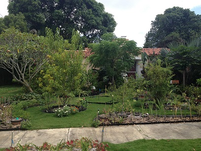 florida-garden